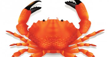 Red crab.