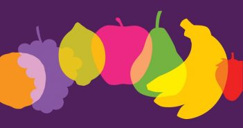 drawing of different types of fruit