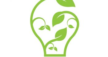 Innovation: leaves in shape of ligthbulb